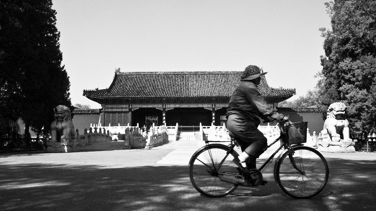Radfahrer überall