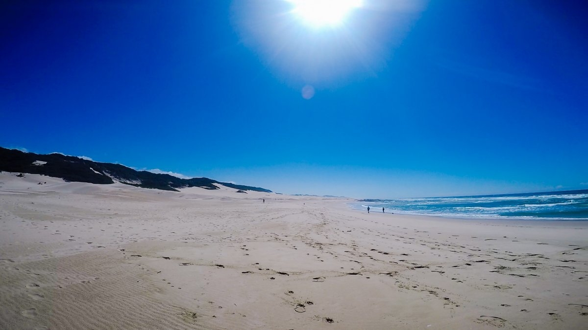 Port Alfred Beach Dunes