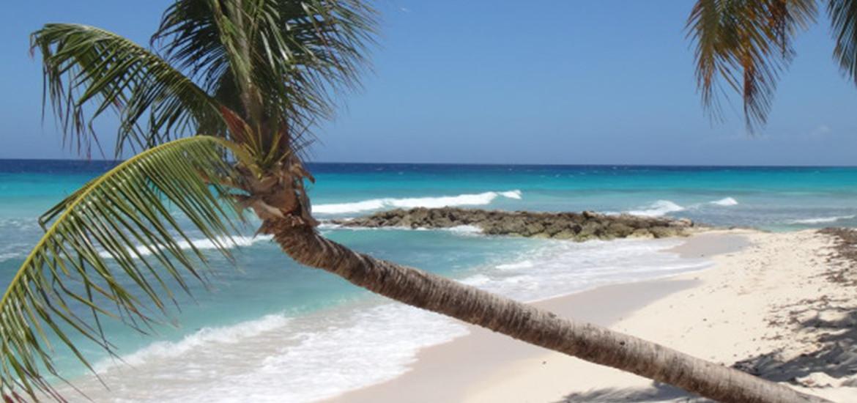 BarbadosTest